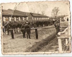 44. Manewry 1938. Zdjęcie nadesłała E.Świstak
