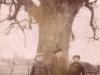 65. Czy to Miętne? Zdjęcie było wzięte wraz z innymi z MIętnego. Z tyłu zdjęcia napisane, ze Gdańsk, ale drzewo tak okazałe jak te z Miętnego z parku. Zdjęcie udostępniła p. Mucha