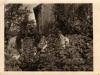 Rok 1947. Unin.Stanisław Piesiewicz, Tadeusz Zalewski, Julia Domarecka /maliniak w sadzie Antoniego Maszkiewicza/. Fotografie ze zbiorów E. Domareckiej