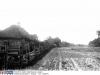 droga-w-Celejowie-rok-1906-garwolin.org_