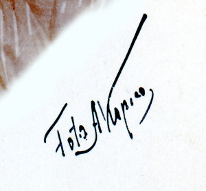 podpis_a_kapica