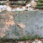 Wizja lokalna na cmentarzu żydowskim w Sulbinach