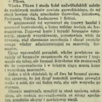 Pilawa na początku XX w.