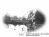 372. Nr org.-| Nazwisko i Imiona: Kapica z d. Wajda Anna (1910-1985) - żona Andrzeja Kapicy| Opis na kopercie: | Rozpoznanie: