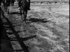 Sonderdienst-Garwolin-1939-1941000146
